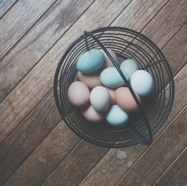 egg_basket_1455798346