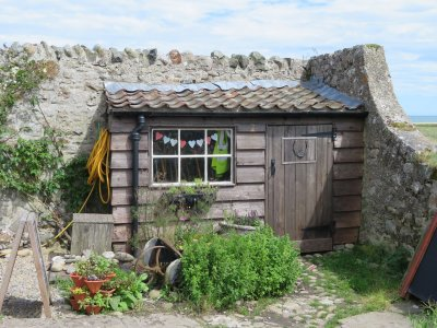 Learning from The Shed - An Exercise in Social Media Manipulation 1
