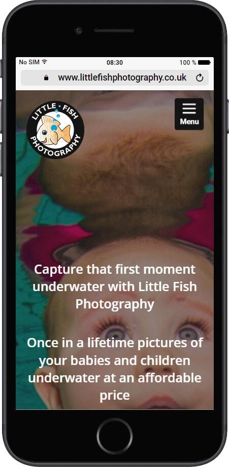 littlefish-m
